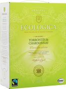 Ecologica Torrontés Chardonnay box